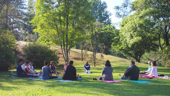 chakra do coração - retiro em são paulo - espaço zen em sp - blog da lira