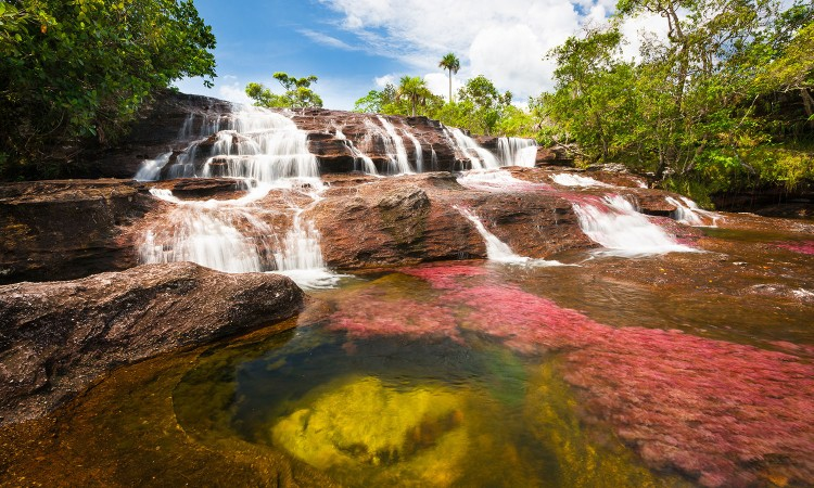 gl46-colombia-special_section-cancc83o_cristales-1500x900
